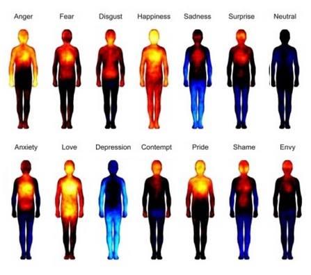 kroppens følelser